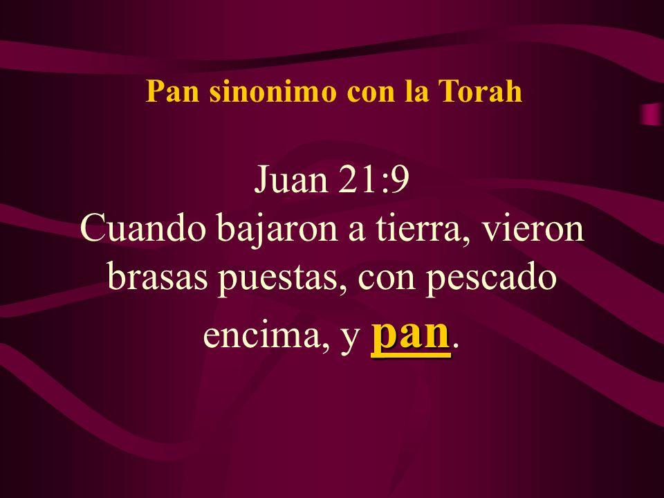 Juan 21:9 pan Cuando bajaron a tierra, vieron brasas puestas, con pescado encima, y pan. Pan sinonimo con la Torah