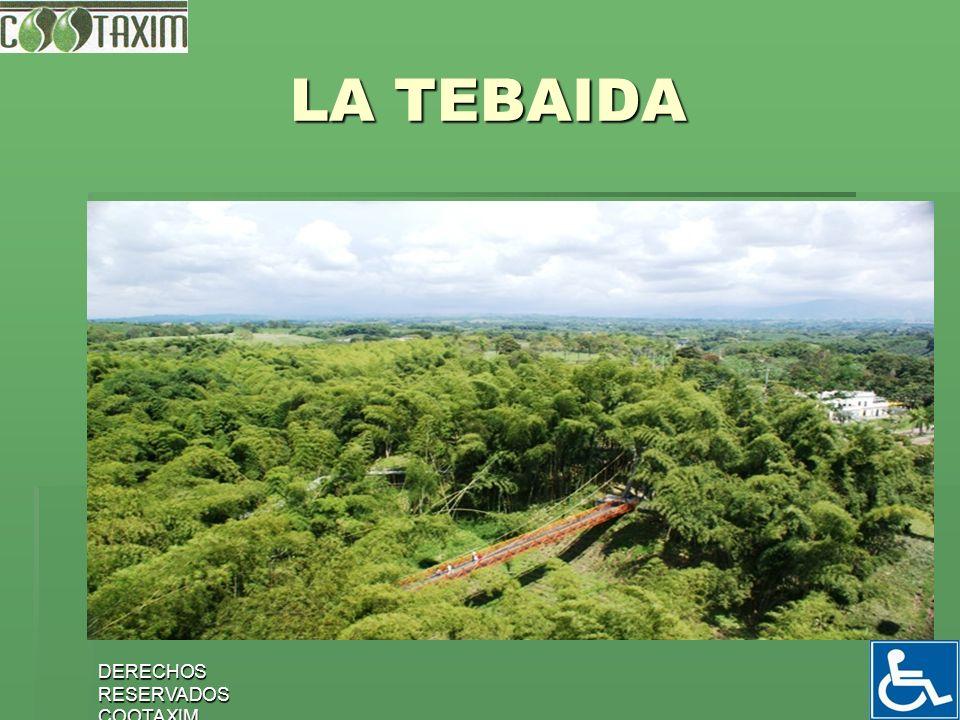 DERECHOS RESERVADOS COOTAXIM 19 LA TEBAIDA