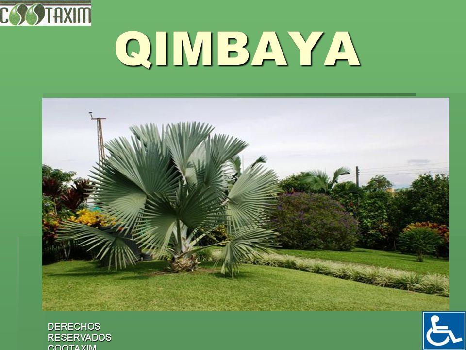 DERECHOS RESERVADOS COOTAXIM 27 QIMBAYA