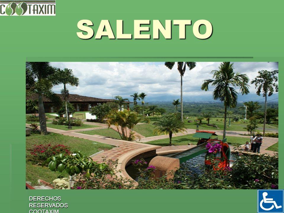 10 ACTIVIDADES EN SALENTO Visitar el VALLE DE COCORA.