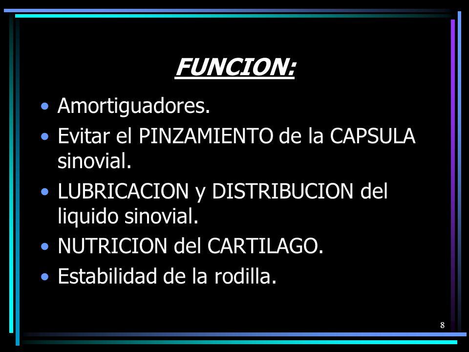 8 FUNCION: Amortiguadores.Evitar el PINZAMIENTO de la CAPSULA sinovial.