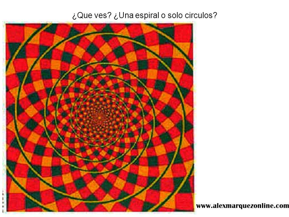 ¿Que ves? ¿Una espiral o solo circulos? www.alexmarquezonline.com