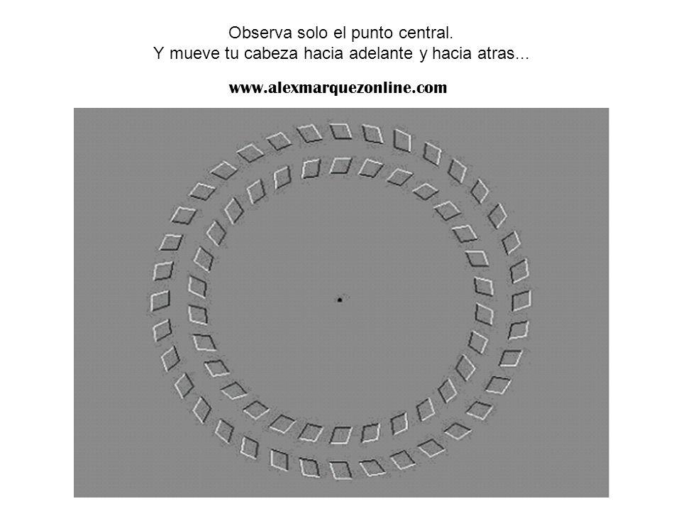 Observa solo el punto central. Y mueve tu cabeza hacia adelante y hacia atras... www.alexmarquezonline.com