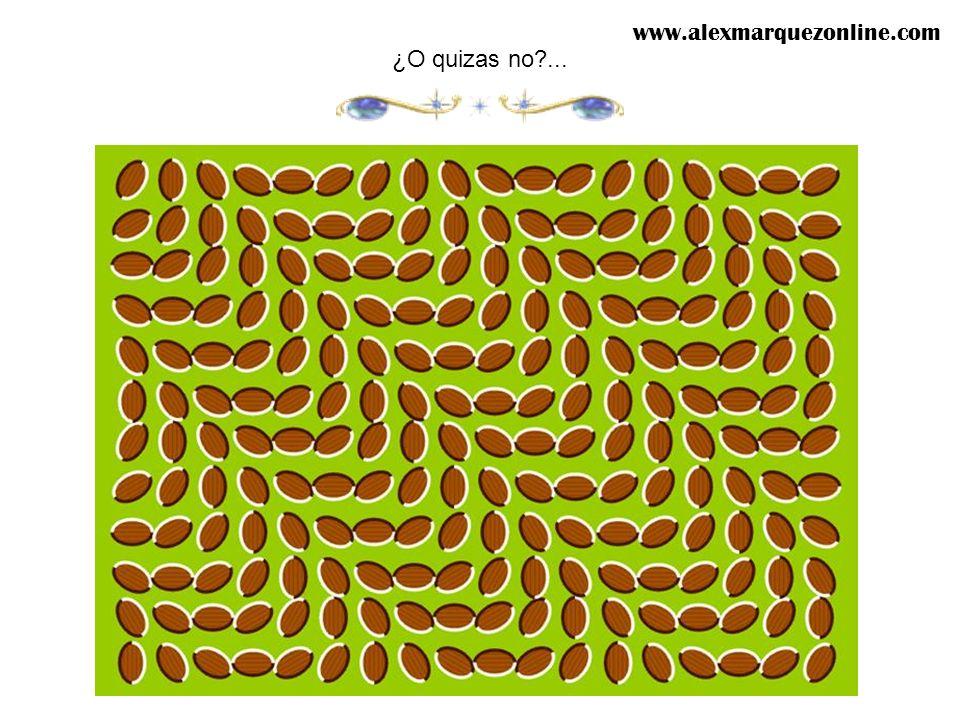 ¡Las lineas rojas siempre estan paralelas entre ellas! www.alexmarquezonline.com