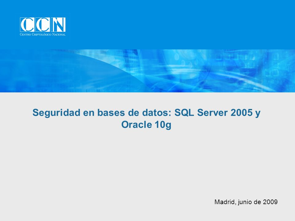 Madrid, junio de 2009 Seguridad en bases de datos: SQL Server 2005 y Oracle 10g