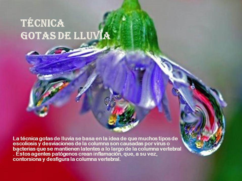 TÉCNICA GOTAS DE LLUVIA La técnica gotas de lluvia se basa en la idea de que muchos tipos de escoliosis y desviaciones de la columna son causadas por virus o bacterias que se mantienen latentes a lo largo de la columna vertebral.