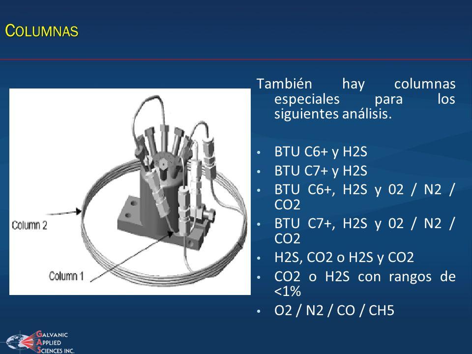 C OLUMNAS También hay columnas especiales para los siguientes análisis. BTU C6+ y H2S BTU C7+ y H2S BTU C6+, H2S y 02 / N2 / CO2 BTU C7+, H2S y 02 / N
