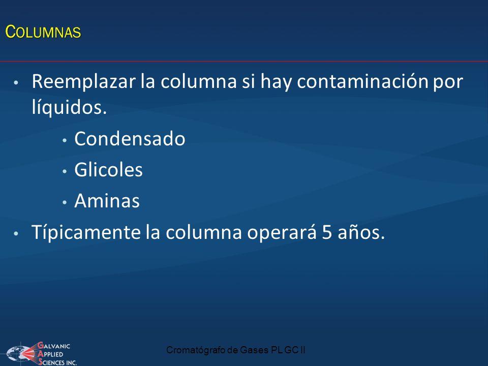 Cromatógrafo de Gases PL GC II C OLUMNAS Reemplazar la columna si hay contaminación por líquidos. Condensado Glicoles Aminas Típicamente la columna op