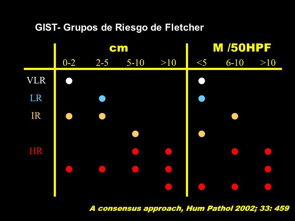 0-22-55-10>10<56-10>10 VLR LR IR HR cm M /50HPF A consensus approach, Hum Pathol 2002; 33: 459 GIST- Grupos de Riesgo de Fletcher