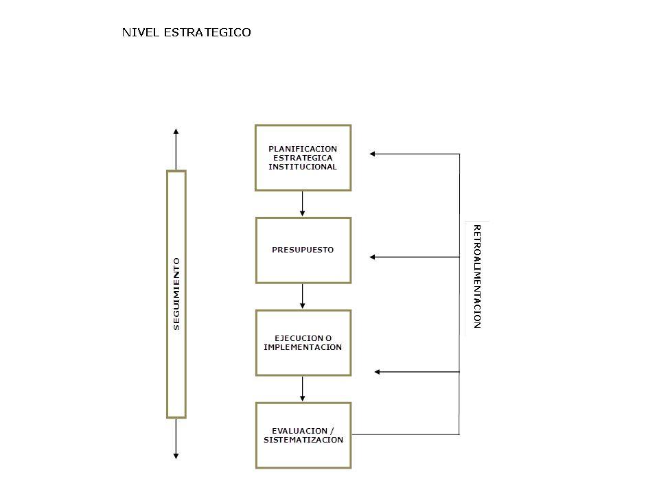 La institucionalización Las políticas y las prácticas Las recomendaciones de la evaluación La articulación proyecto – programa – institución Los indicadores El fortalecimiento de capacidades Las herramientas Las lecciones y los retos