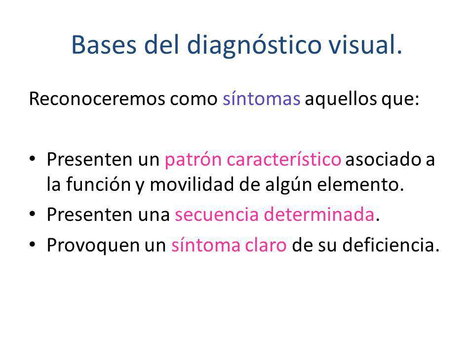 Bases del diagnóstico visual. Reconoceremos como síntomas aquellos que: Presenten un patrón característico asociado a la función y movilidad de algún