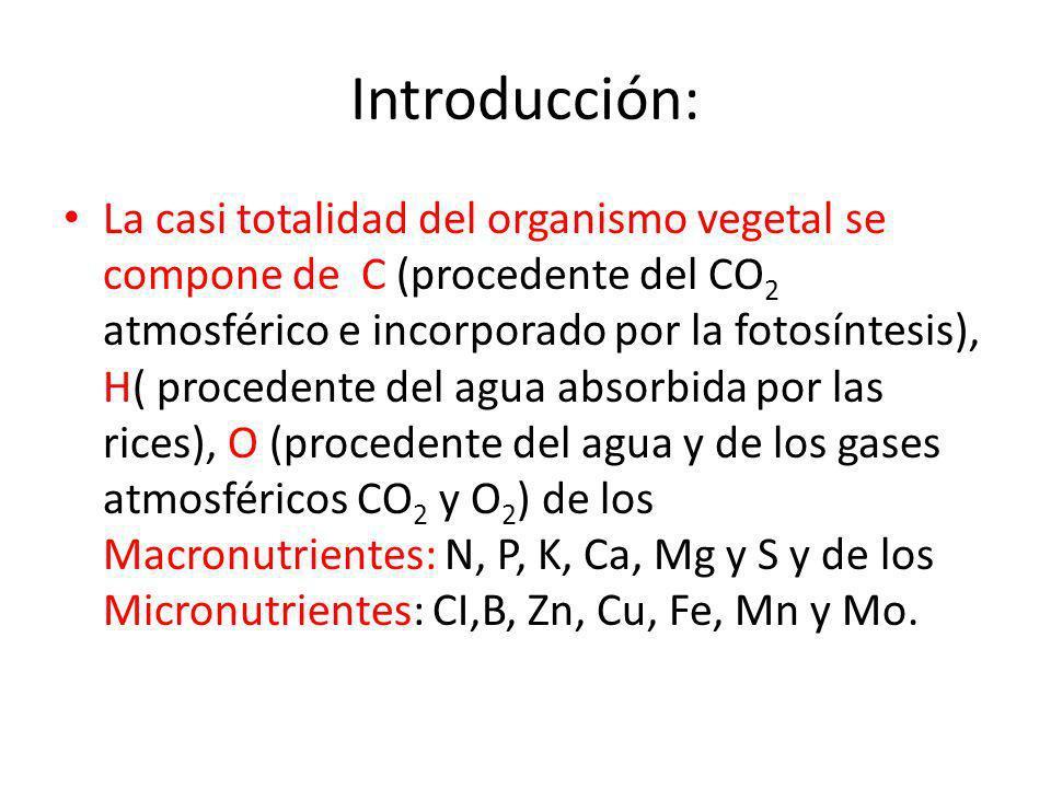 Introducción: La casi totalidad del organismo vegetal se compone de C (procedente del CO 2 atmosférico e incorporado por la fotosíntesis), H( proceden