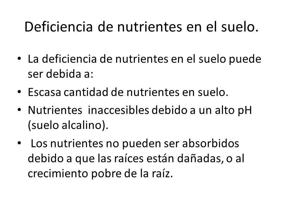 Deficiencia de nutrientes en el suelo. La deficiencia de nutrientes en el suelo puede ser debida a: Escasa cantidad de nutrientes en suelo. Nutrientes