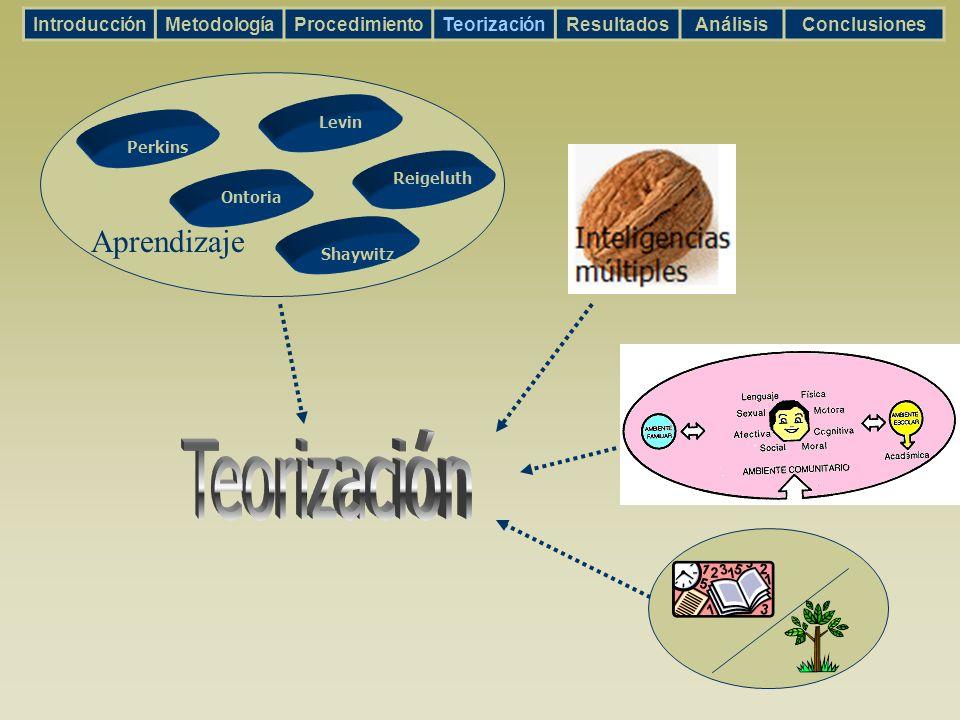 IntroducciónMetodologíaProcedimientoTeorizaciónResultadosAnálisisConclusiones Ontoria Shaywitz Levin Reigeluth Perkins Aprendizaje