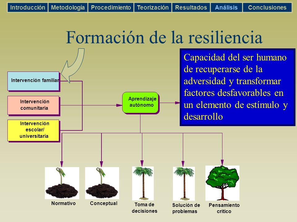 Intervención familiar Intervención comunitaria Intervención escolar/ universitaria Aprendizaje autónomo RESILIENCIA Solución de problemas Pensamiento
