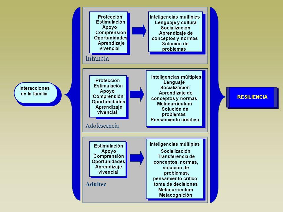 Infancia Adolescencia Adultez Interacciones en la familia Inteligencias múltiples Lenguaje y cultura Socialización Aprendizaje de conceptos y normas S