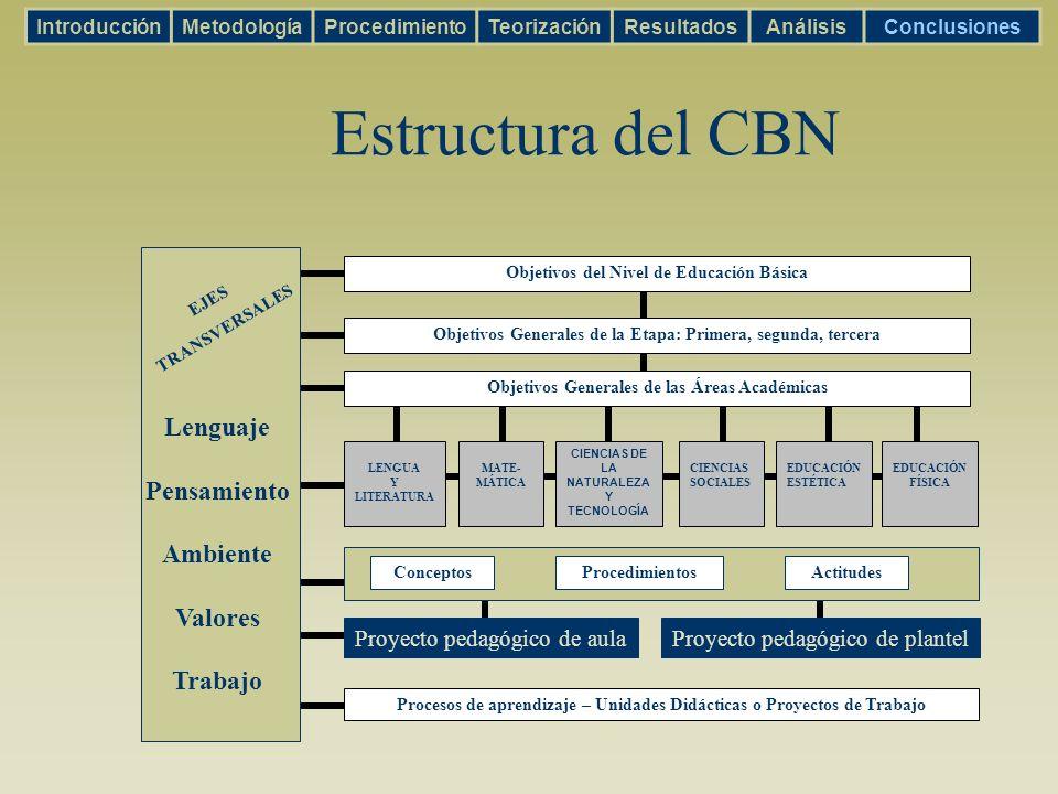 Estructura del CBN Lenguaje Pensamiento Ambiente Valores Trabajo EJES TRANSVERSALES Objetivos del Nivel de Educación Básica Objetivos Generales de la