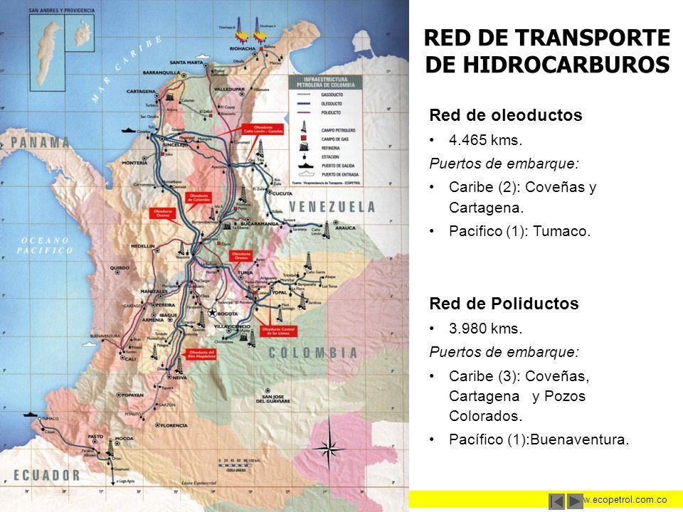 La Energía de los Colombianos www.ecopetrol.com.co RED DE TRANSPORTE DE HIDROCARBUROS Red de oleoductos 4.465 kms. Puertos de embarque: Caribe (2): Co