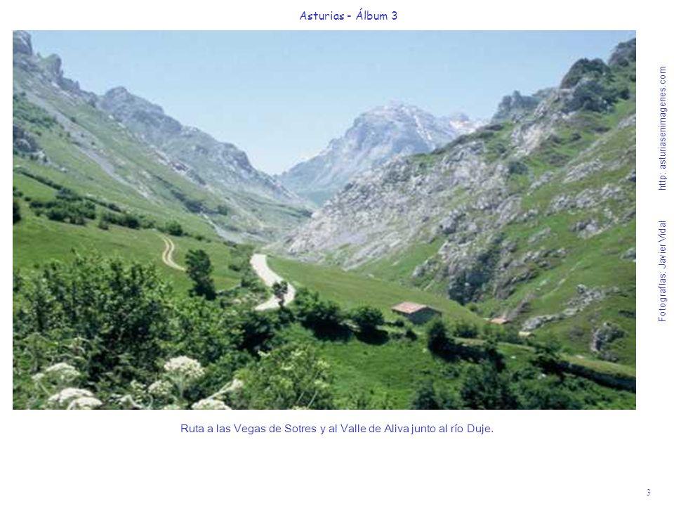 4 Asturias - Álbum 3 Fotografías: Javier Vidal http: asturiasenimagenes.com Invernales del Texu, inicio de la pista hacia Pandébano (10 en coche).