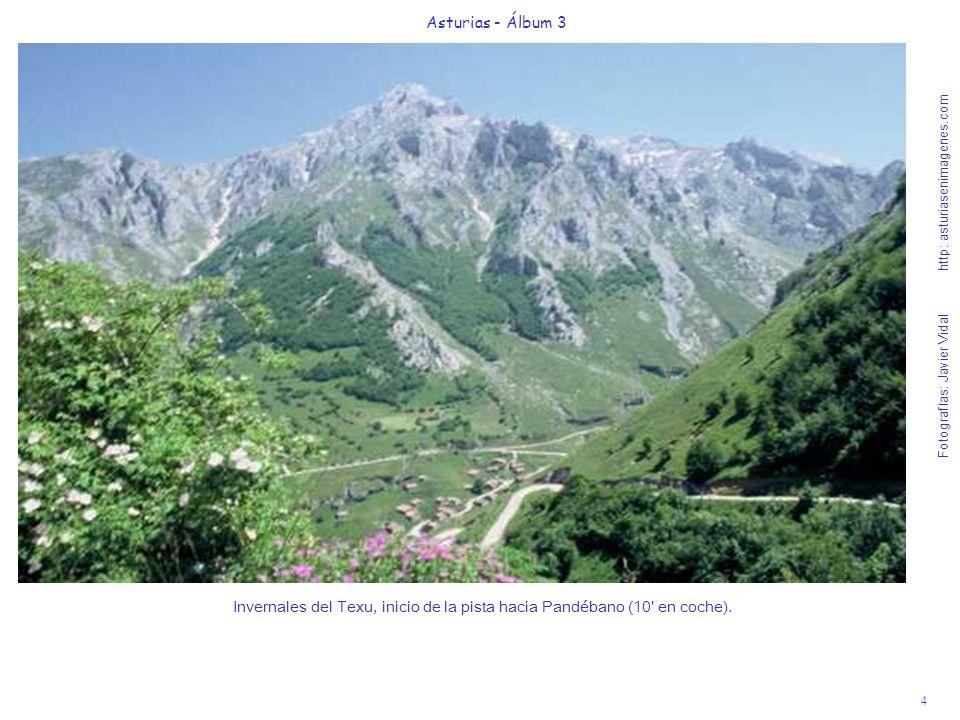 4 Asturias - Álbum 3 Fotografías: Javier Vidal http: asturiasenimagenes.com Invernales del Texu, inicio de la pista hacia Pandébano (10' en coche).