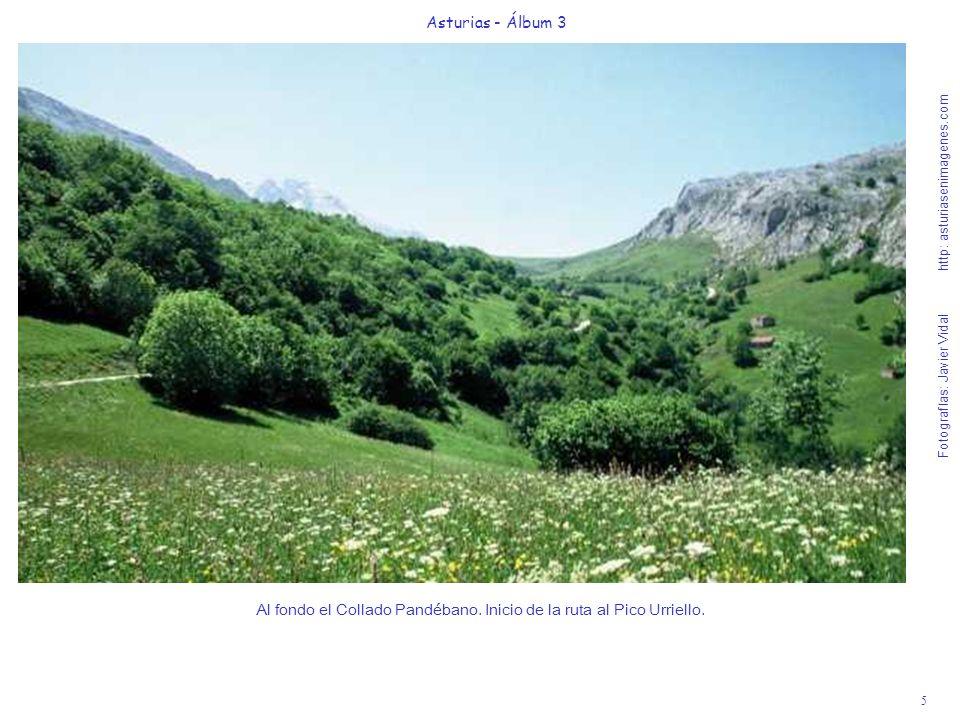 5 Asturias - Álbum 3 Fotografías: Javier Vidal http: asturiasenimagenes.com Al fondo el Collado Pandébano. Inicio de la ruta al Pico Urriello.