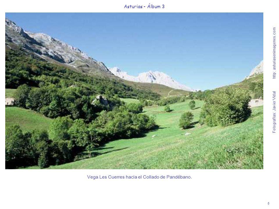 7 Asturias - Álbum 3 Fotografías: Javier Vidal http: asturiasenimagenes.com Vista de Vega Les Cuerres al llegar en 20 al Collado Pandébano.