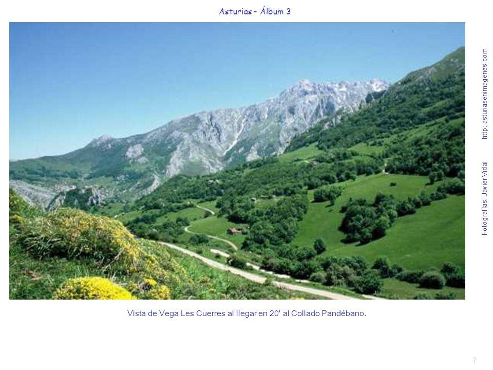 7 Asturias - Álbum 3 Fotografías: Javier Vidal http: asturiasenimagenes.com Vista de Vega Les Cuerres al llegar en 20' al Collado Pandébano.