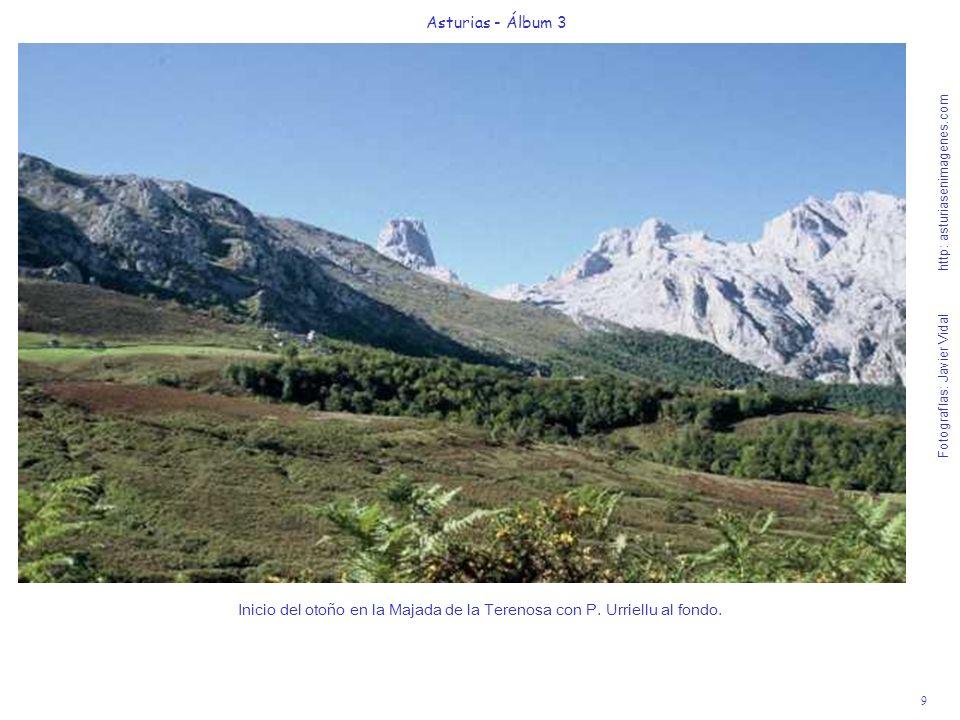 9 Asturias - Álbum 3 Fotografías: Javier Vidal http: asturiasenimagenes.com Inicio del otoño en la Majada de la Terenosa con P. Urriellu al fondo.