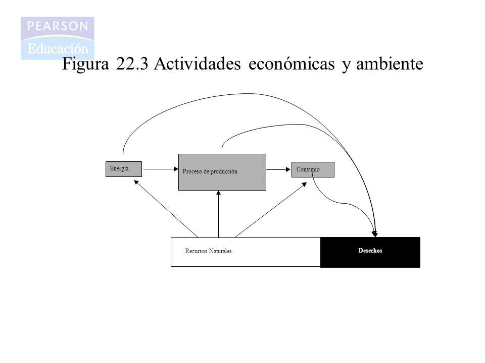 Figura 22.3 Actividades económicas y ambiente Proceso de producción Recursos Naturales Energía Consumo Desechos