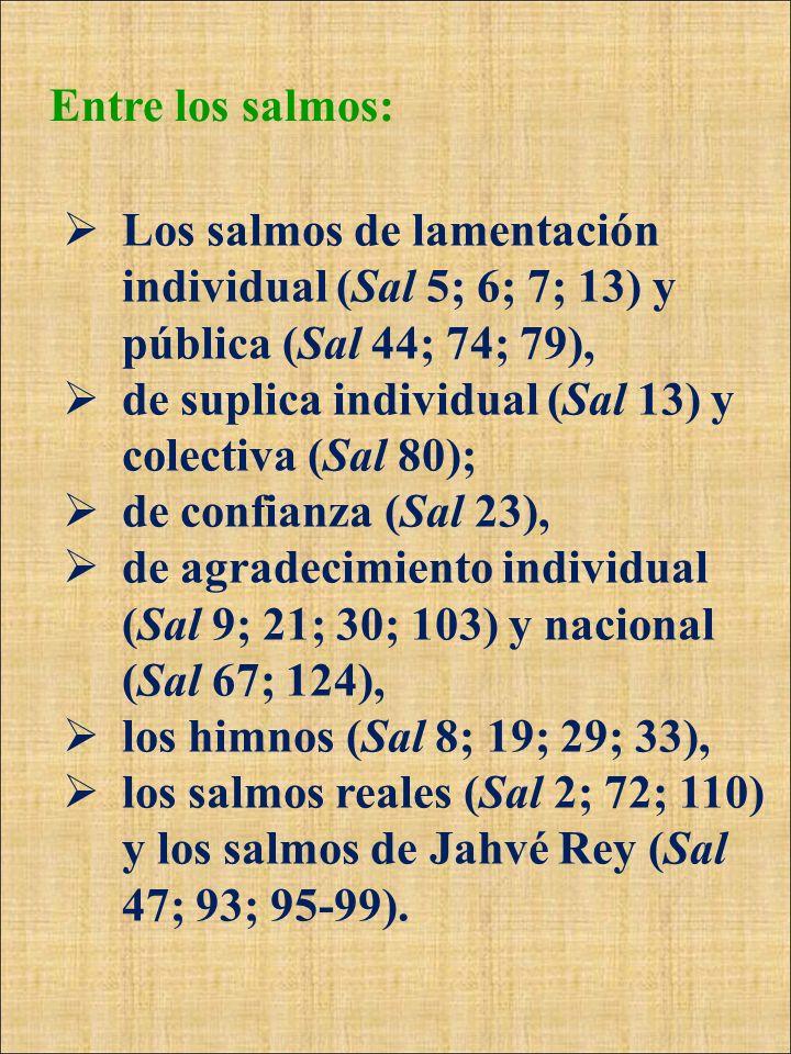 Entre los salmos: Los salmos de lamentación individual (Sal 5; 6; 7; 13) y pública (Sal 44; 74; 79), de suplica individual (Sal 13) y colectiva (Sal 8