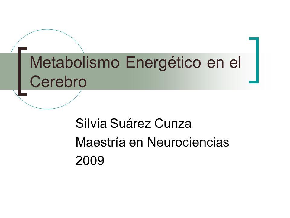 Metabolismo Energético en el Cerebro Silvia Suárez Cunza Maestría en Neurociencias 2009