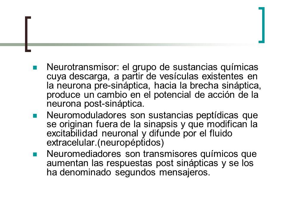 Neurotransmisor: el grupo de sustancias químicas cuya descarga, a partir de vesículas existentes en la neurona pre-sináptica, hacia la brecha sináptic