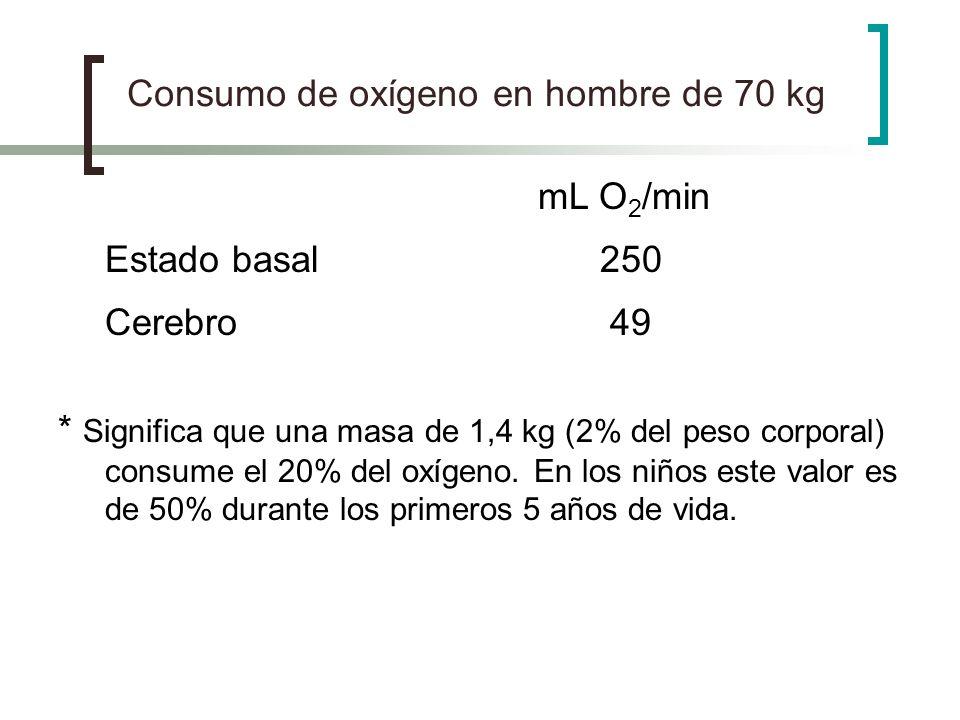 Consumo de oxígeno en hombre de 70 kg mL O 2 /min Estado basal 250 Cerebro 49 * Significa que una masa de 1,4 kg (2% del peso corporal) consume el 20%
