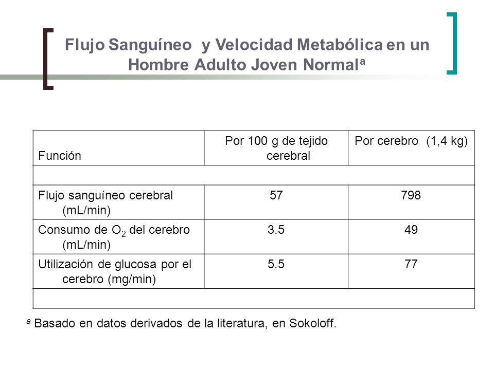 Flujo Sanguíneo y Velocidad Metabólica en un Hombre Adulto Joven Normal a a Basado en datos derivados de la literatura, en Sokoloff. Función Por 100 g