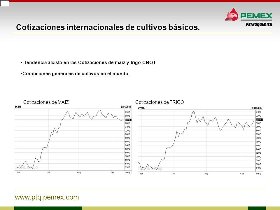www.ptq.pemex.com Cotizaciones internacionales de cultivos básicos. Tendencia alcista en las Cotizaciones de maíz y trigo CBOT Condiciones generales d