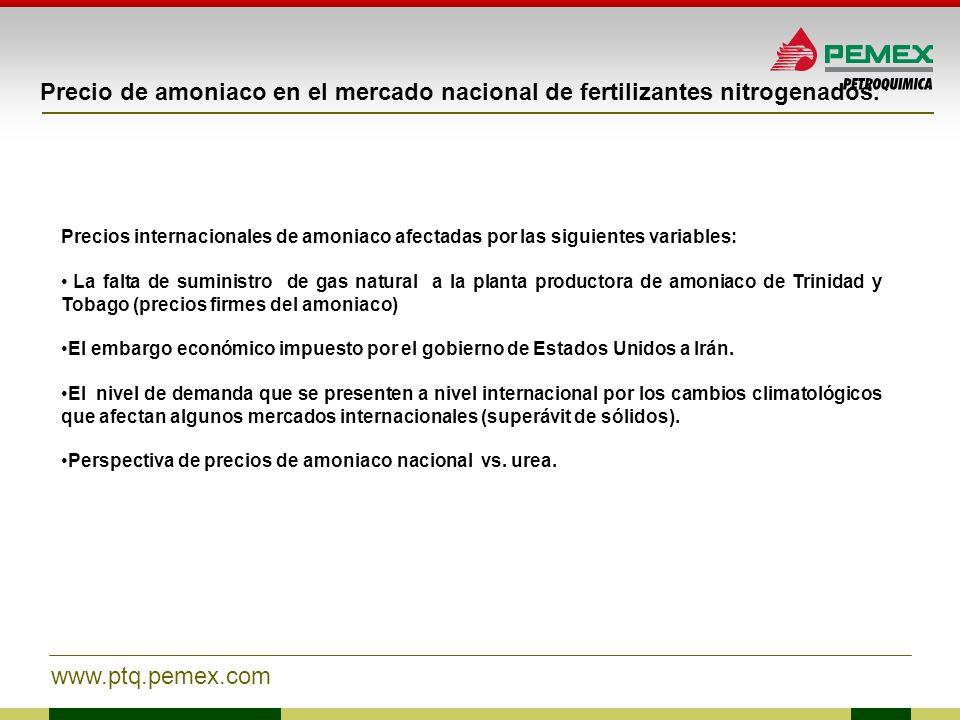 www.ptq.pemex.com Precio de amoniaco en el mercado nacional de fertilizantes nitrogenados. Precios internacionales de amoniaco afectadas por las sigui