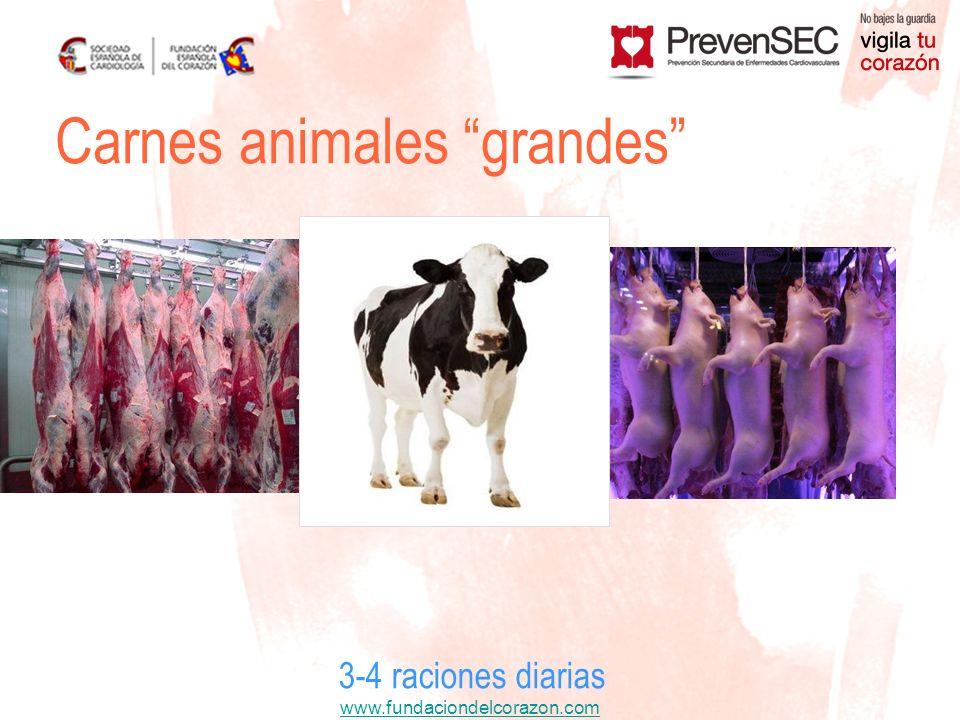 www.fundaciondelcorazon.com 3-4 raciones diarias Carnes animales grandes