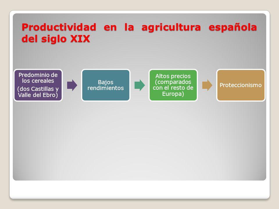 Predominio de los cereales (dos Castillas y Valle del Ebro) Bajos rendimientos Altos precios (comparados con el resto de Europa) Proteccionismo Produc