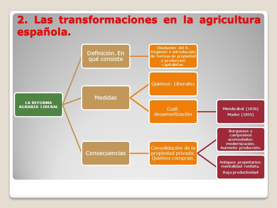 2. Las transformaciones en la agricultura española. LA REFORMA AGRARIA LIBERAL Definición. En qué consiste Disolución del A. Régimen e introducción de