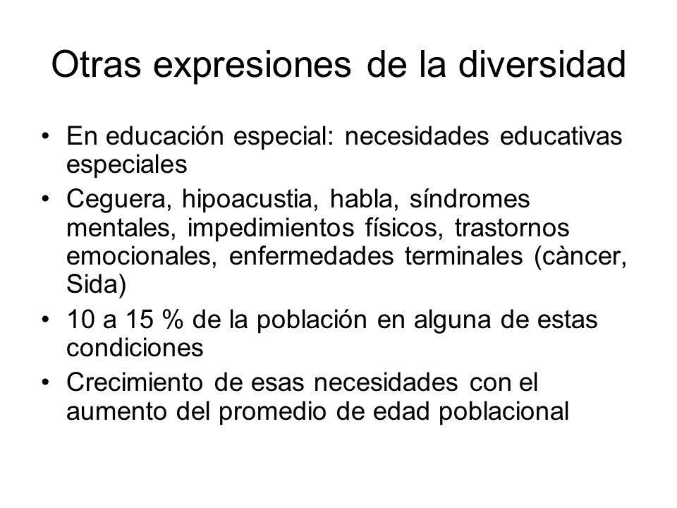 Otras expresiones de la diversidad En educación especial: necesidades educativas especiales Ceguera, hipoacustia, habla, síndromes mentales, impedimie