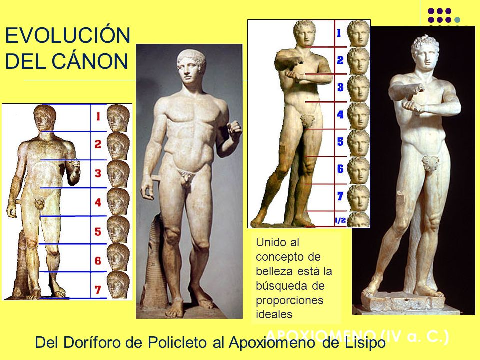 EVOLUCIÓN DEL CÁNON LISIPO: APOXIOMENO (IV a. C.) Unido al concepto de belleza está la búsqueda de proporciones ideales Del Doríforo de Policleto al A