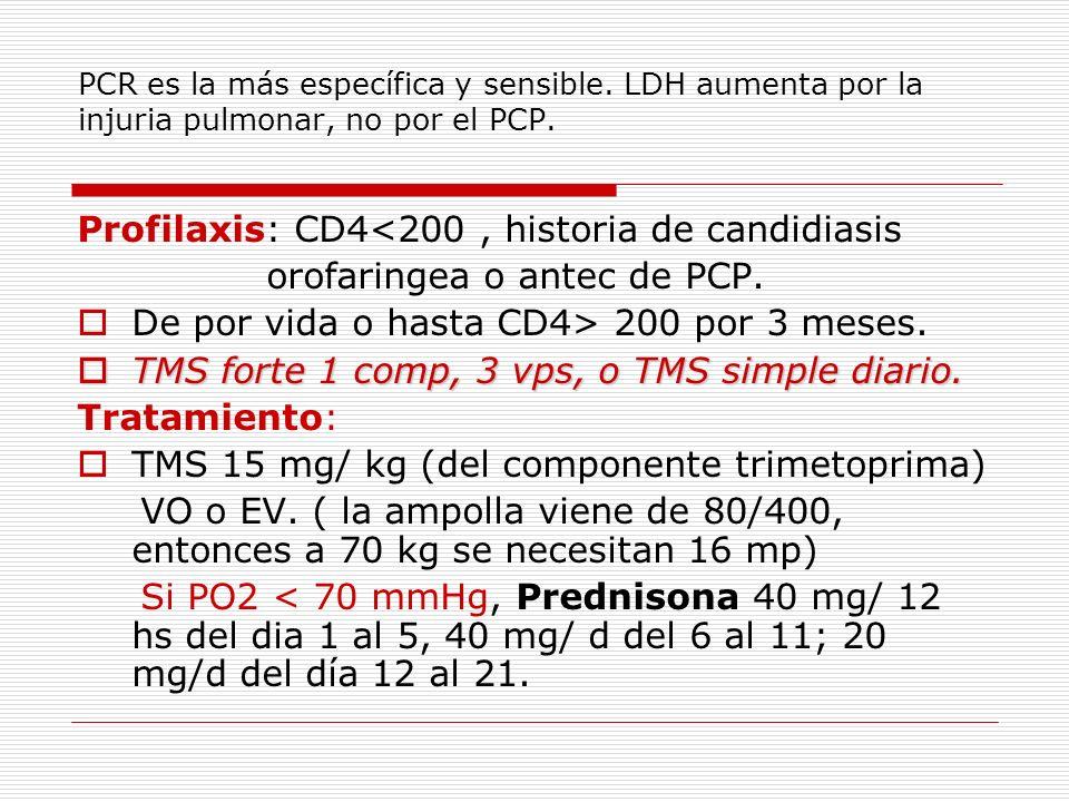 PCR es la más específica y sensible. LDH aumenta por la injuria pulmonar, no por el PCP. Profilaxis: CD4<200, historia de candidiasis orofaringea o an