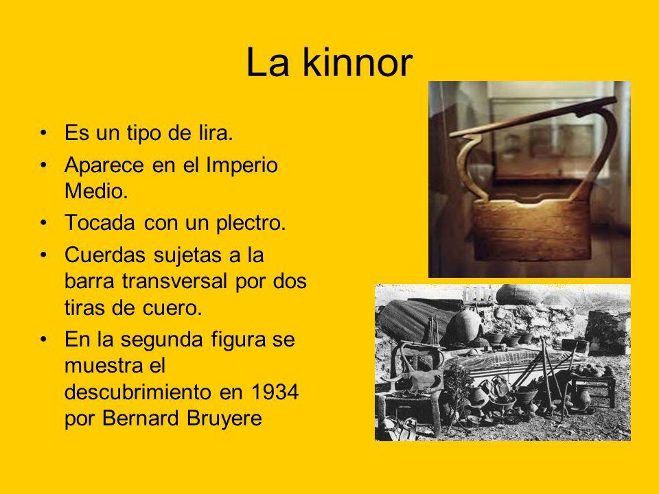 La kinnor Es un tipo de lira. Aparece en el Imperio Medio. Tocada con un plectro. Cuerdas sujetas a la barra transversal por dos tiras de cuero. En la