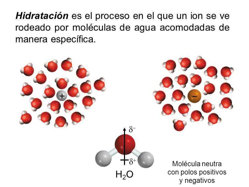 Hidratación es el proceso en el que un ion se ve rodeado por moléculas de agua acomodadas de manera específica. H2OH2O Molécula neutra con polos posit