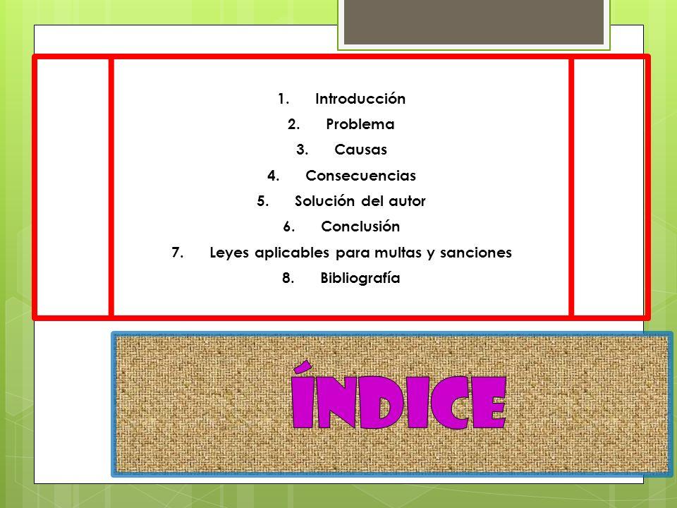 1.Introducción 2.Problema 3.Causas 4.Consecuencias 5.Solución del autor 6.Conclusión 7.Leyes aplicables para multas y sanciones 8.Bibliografía