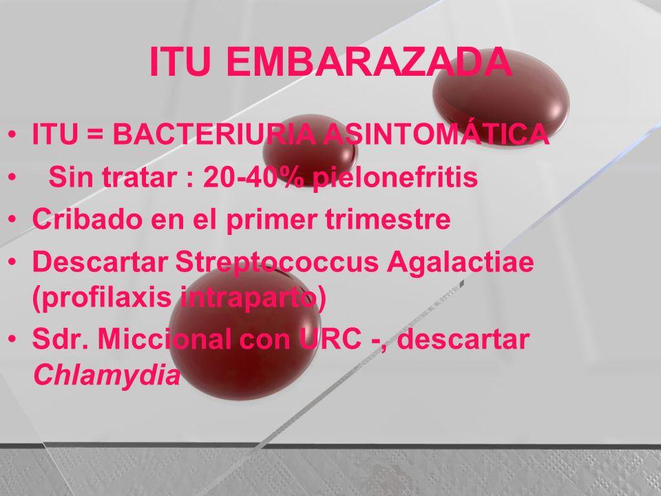 ITU EMBARAZADA ITU = BACTERIURIA ASINTOMÁTICA Sin tratar : 20-40% pielonefritis Cribado en el primer trimestre Descartar Streptococcus Agalactiae (pro