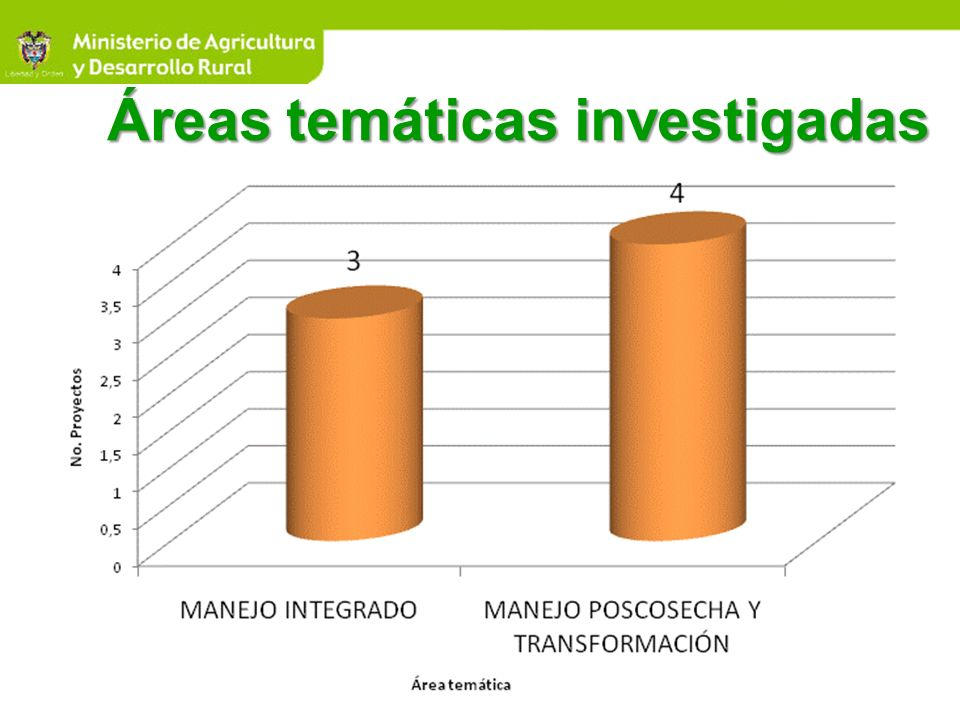 Áreas temáticas investigadas