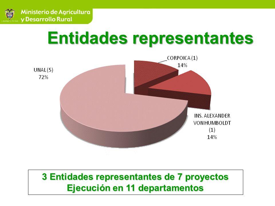 3 Entidades representantes de 7 proyectos Ejecución en 11 departamentos Entidades representantes