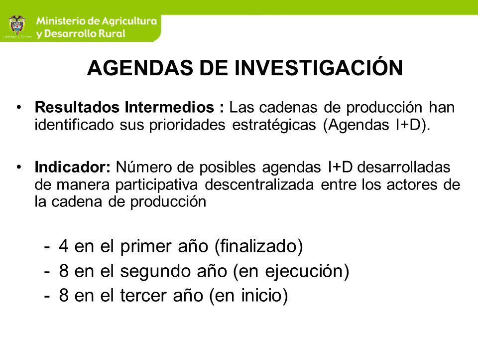FASEPRIORIZACION CADENAS SELECCIÓN GRUPOS EJECUTORES APOYO EXPERTOSCOORDINACION CAPACITACION Y FORMACION AVANCES Y RESULTADOS PRIMERA LACTEA UNVERSIDAD EXTERNADO DE COLOMBIA EXPERTOS BRASILEROS ANTONIO MARIA GOMES DE CASTRO Y SUZANA MARIA VALLELIMA MADR - COLCIENCIAS UN PASANTE PARA CADA CADENA 4 INFORMES FINALES - 4 AGENDAS DE INVESTIGACION BASE PARA LA CONVOCATORIA 2008 FORESTAL FUNDACION TECNOS 4 PUBLICACIONES, 1 JORNADA DE SOCIALIZACIÓN DE LOS RESULTADOS PISCICOLA OBSERVATORIO DE CIENCIA Y TECNOLOGIA 4 ESTUDIOS DE VIGILANCIA TECNOLOGICA CACAO BIOGESTION - UNAL 4 GRUPOS CAPACITADOS - 4 PASANTES SEGUNDA FRUTALES CORPOICA BIOGESTION - UNAL Y EXPERTOS BRASILEROS ANTONIO MARIA GOMES DE CASTRO Y SUZANA MARIA VALLELIMA MADR - BIOGESTION TRES PASANTES 8 INFORMES DE AVANCE DEL ANALISIS DE DESEMPEÑO DE CADA CADENA PAPA TRES CAPACITACIONES EN ASPECTOS METODOLOGICOS A 5 GRUPOS EJECUTORES PALMA CENIPALMA 11 REUNIONES DE VALIDACION CON LAS CADENAS CAUCHO BIOGESTION - UNAL UNA ASESORIA DE EXPERTOS BRASILEROS FIQUE CAMARON CENIACUA AROMATICAS VON HUMBOLDT CARNE BOVINA FEDEGAN TERCERA CAÑA PANELERA BIOGESTION - UNAL, CENIFLORES CUATRO PASANTES CONSOLIDACION LISTADO GRUPOS PROPONENTES FLORES 2 REUNIONES DE SOCIALIZACION CON LOS COORDINADORES Y SECRETARIOS TECNICOS DE CADENAS PORCICULTURA FUNDACION TECNOS 8 MANIFESTACIONES DE INTERES DE LOS GRUPOS EJECUTORES Y SOLICITUD DE LAS PROPUESTAS OVINO CAPRINA HORTALIZAS UNIVERSIDAD JORGE TADEO LOZANO SEGURIDAD ALIMENTARIA EQUIPO MADR APICULTURA TEKNE ALGODÓN TEAM CONSULTORES AGENDAS DE INVESTIGACIÓN