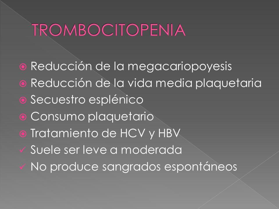 Reducción de la megacariopoyesis Reducción de la vida media plaquetaria Secuestro esplénico Consumo plaquetario Tratamiento de HCV y HBV Suele ser lev